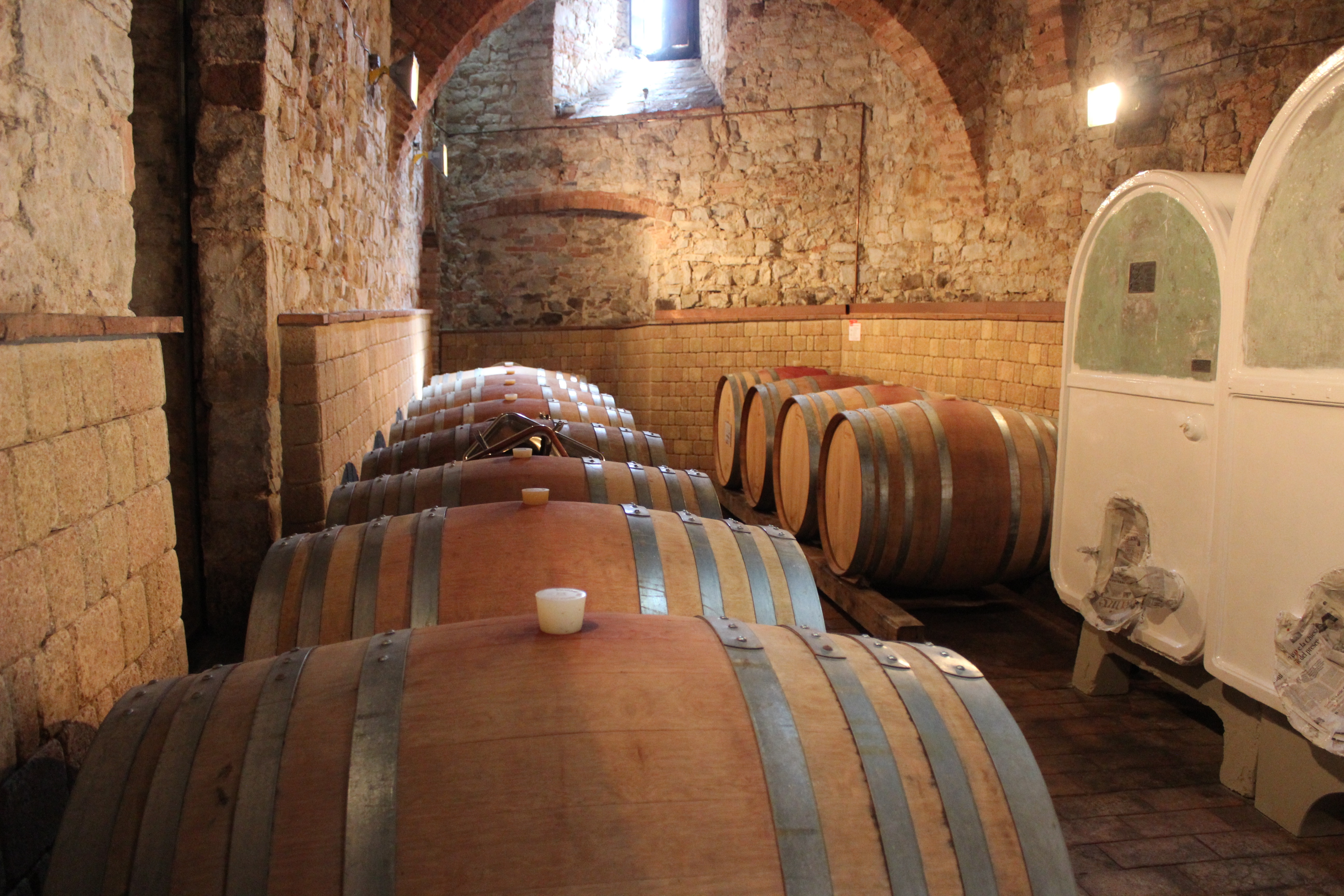 Oak barrels filled with young wine