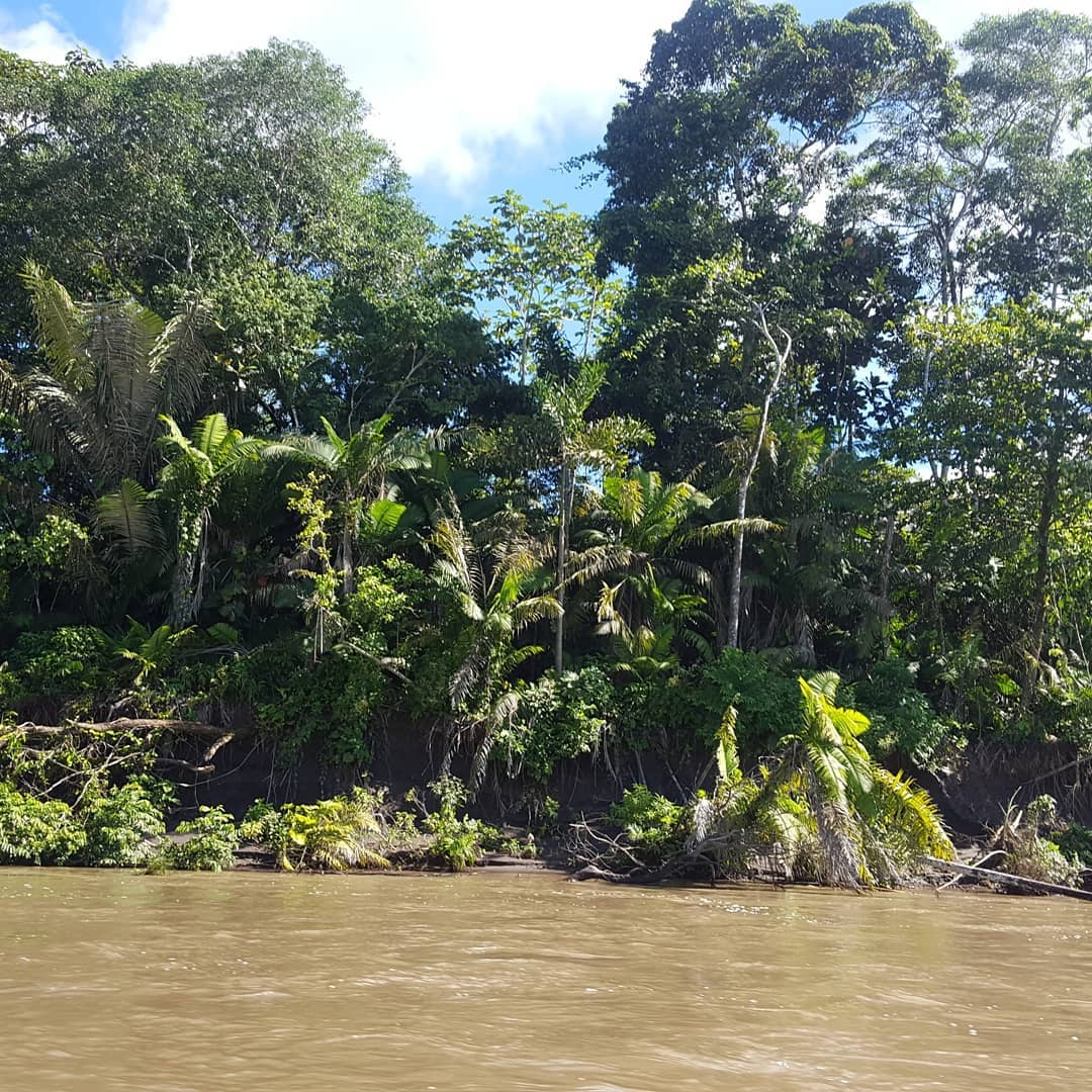 Boating down the Napo River
