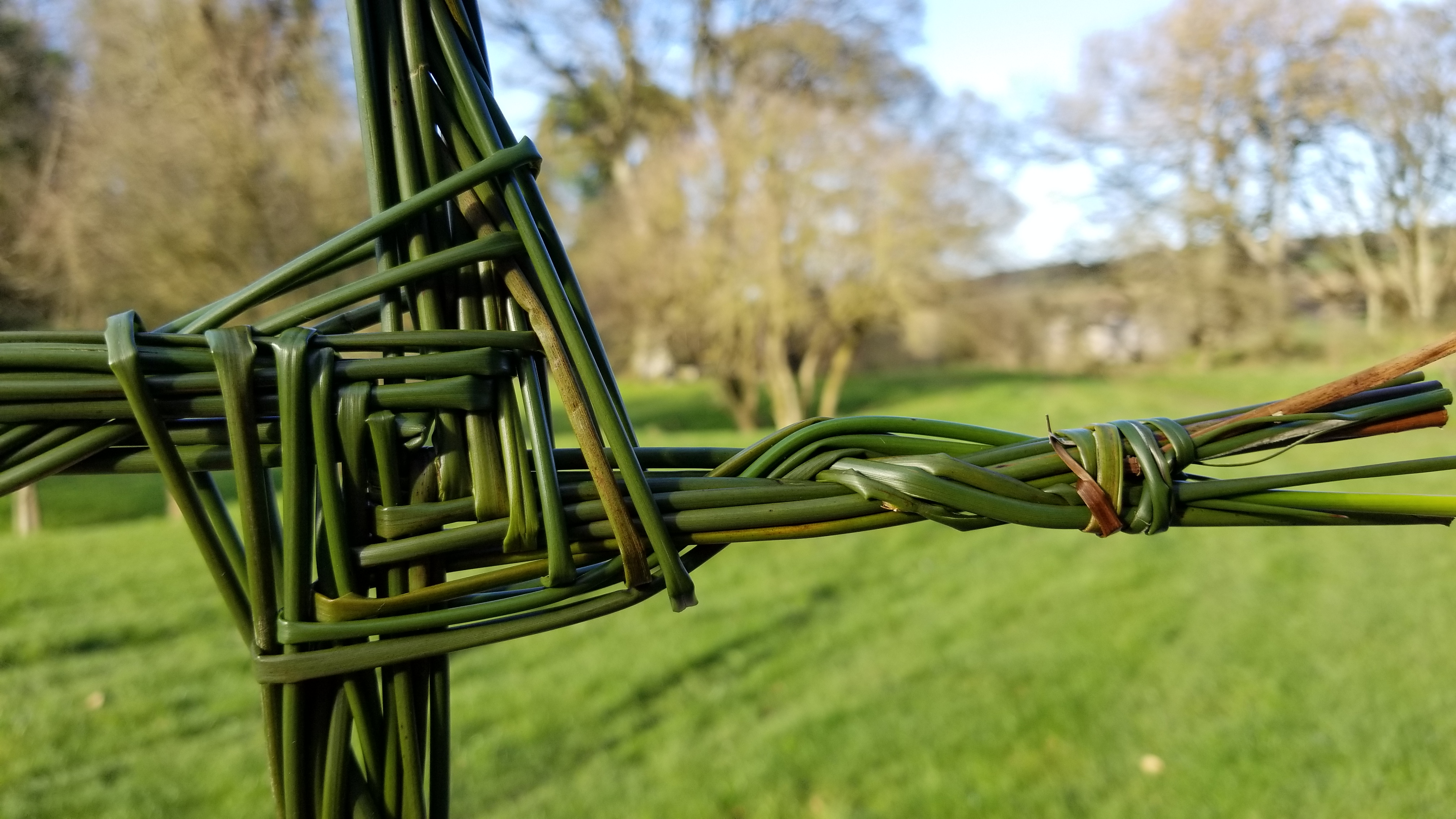 Celebrating St  Brigid's Day with Pagan Rituals | Study Abroad Blogs