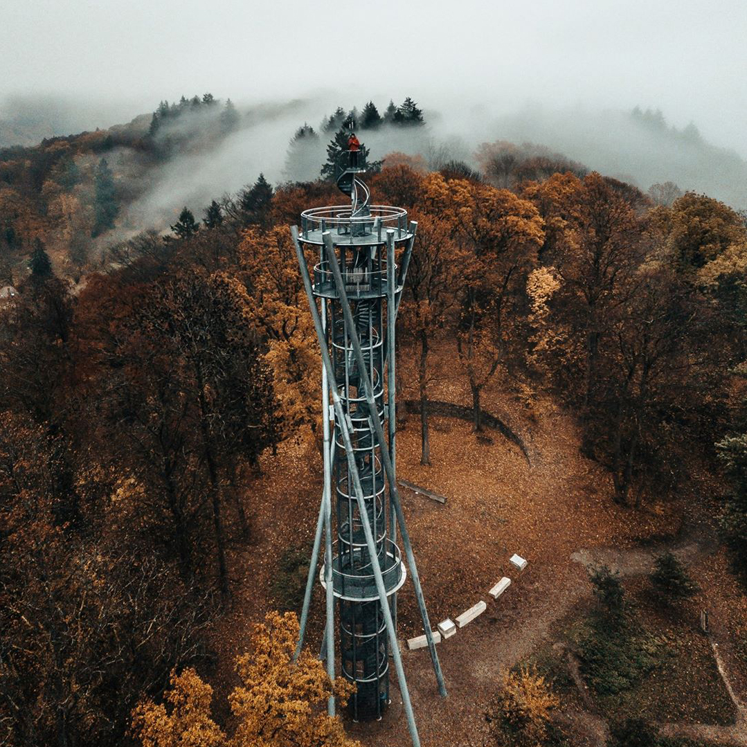 TV tower in Freiburg amidst the foliage and fog