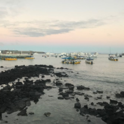 Islands at dusk in the Galapagos