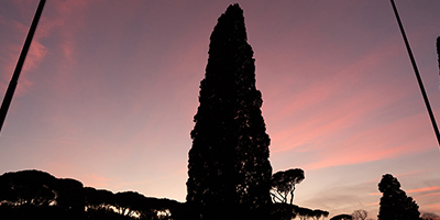 Image in Rome with towering black figure at pink dusk
