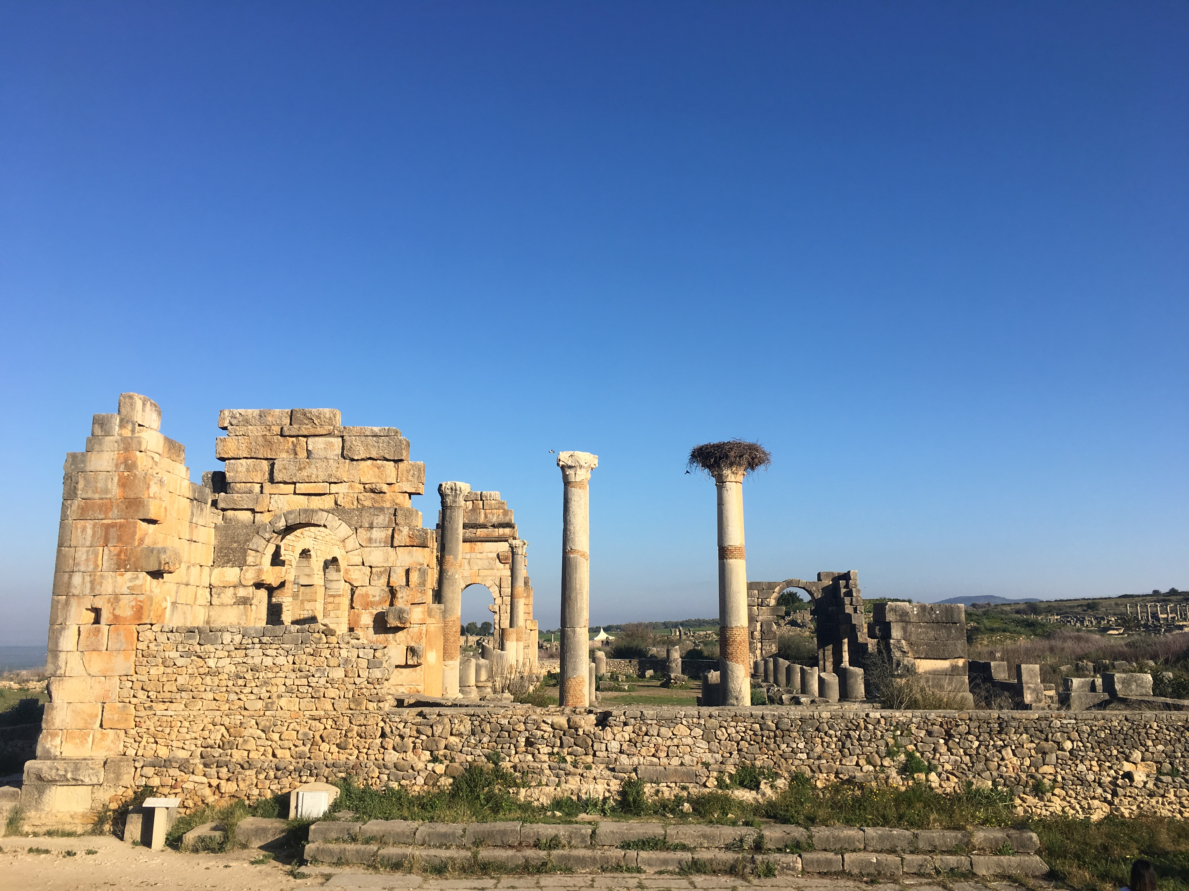 The ruins of the Roman city of Volubilis