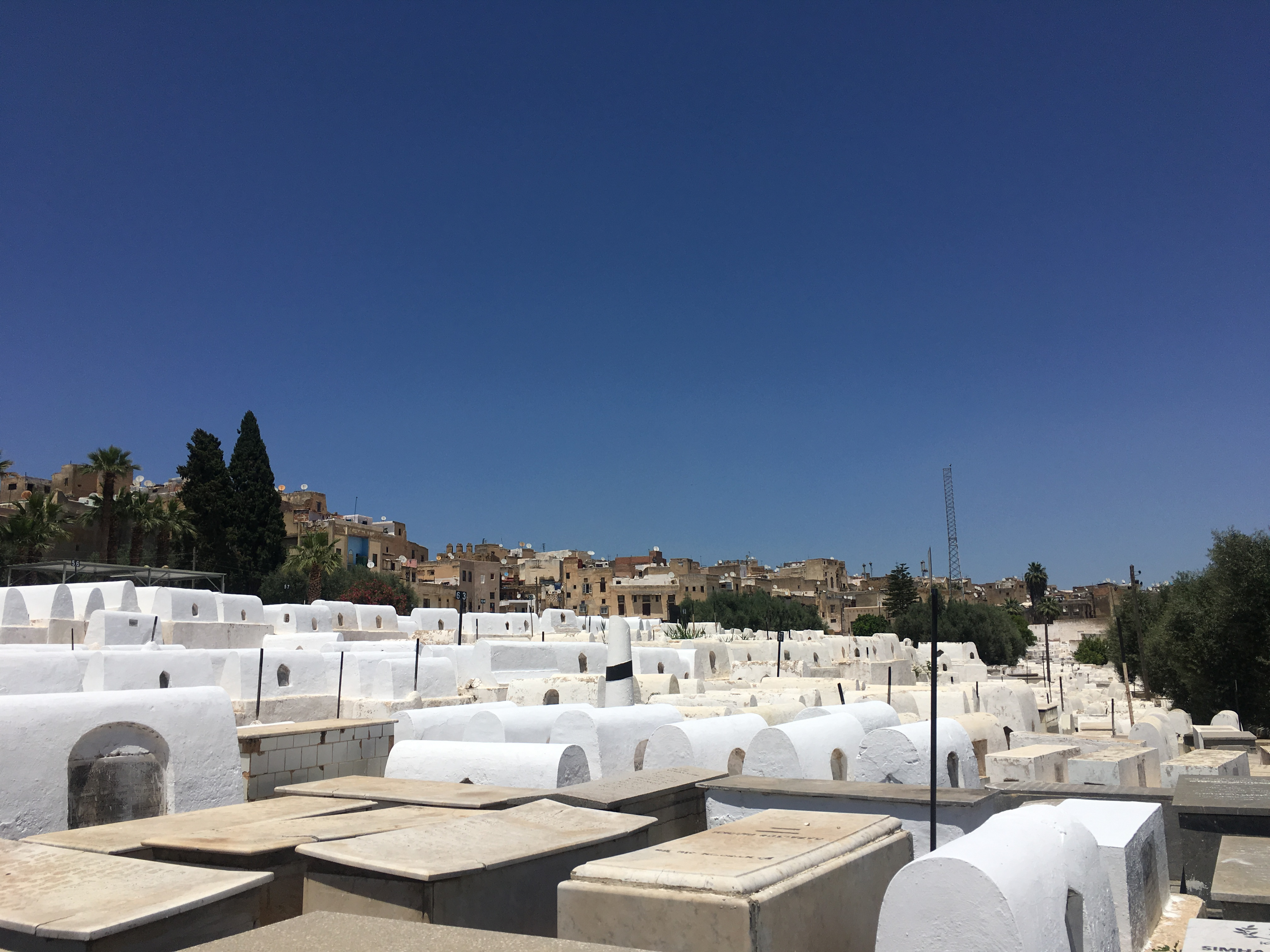 The Jewish cemetery in Fez