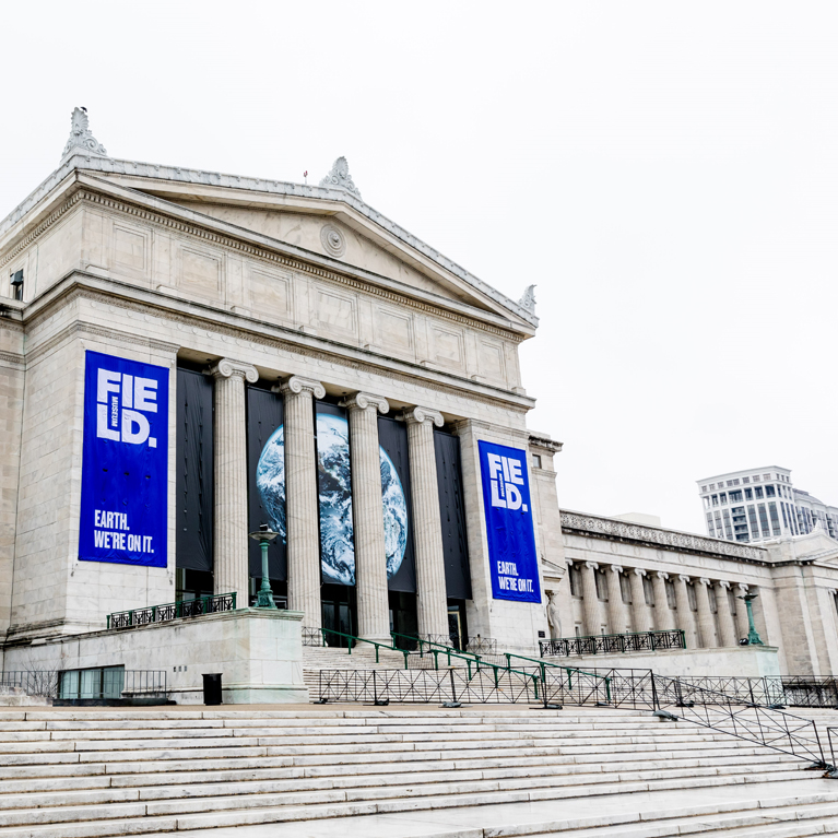 the field museum grand stairway entrance