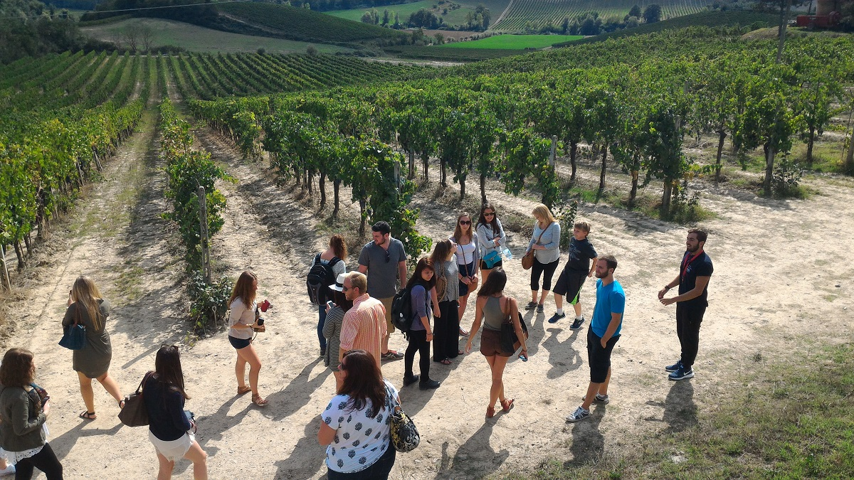 Students Outside in an Italian Field Learning About Food and Wine