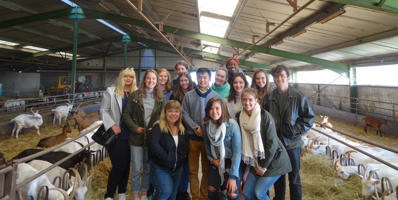 Students studying in Nantes visit a goat farm