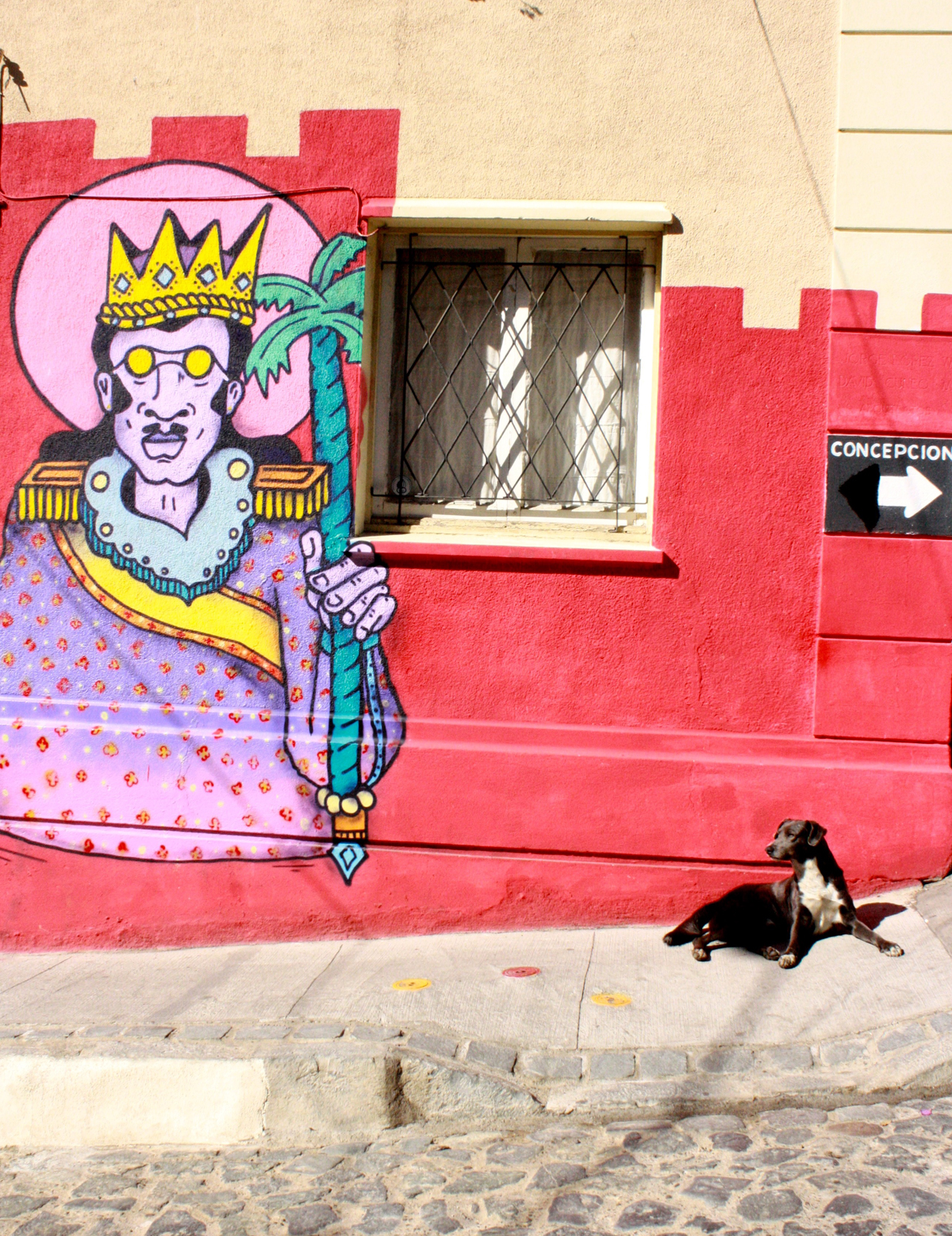 dog in front of wall of street art in Santiago, Chile