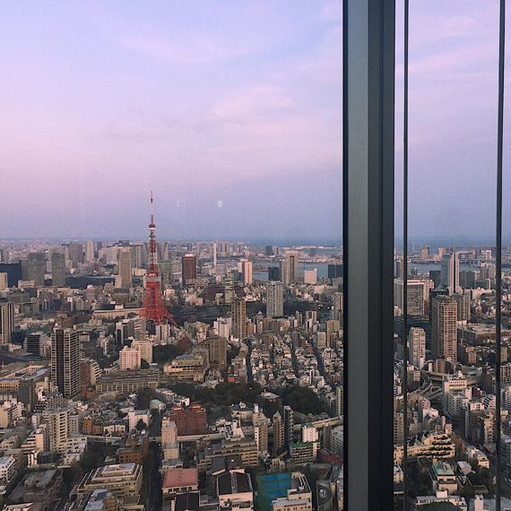 Tokyo cityscape view at dusk from tall building
