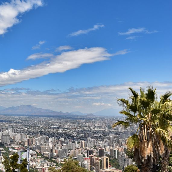 View of Santiago cityscape with blue sky and palm tree