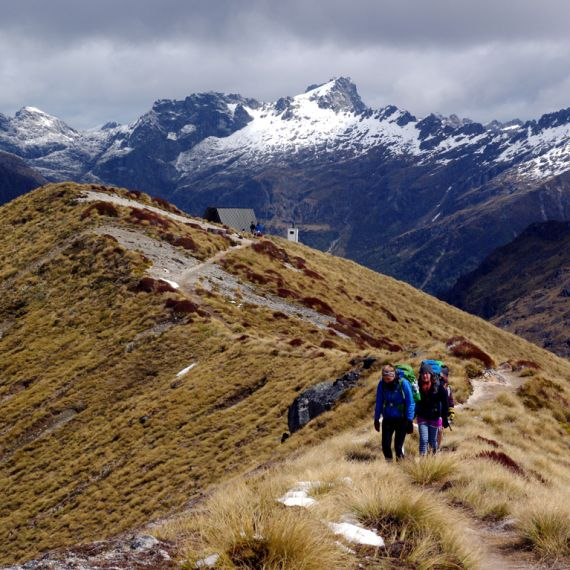 students hiking in New Zealand