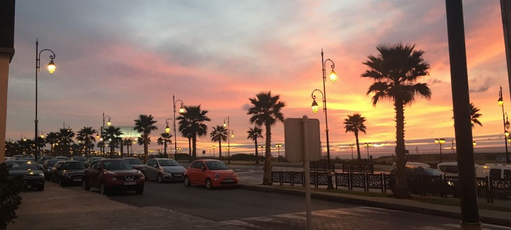 a sunset on a boulevard with palm trees
