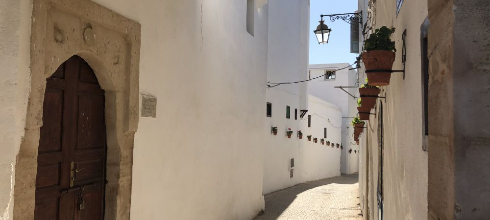 A street in the Rabat Medina lined with flowerpots