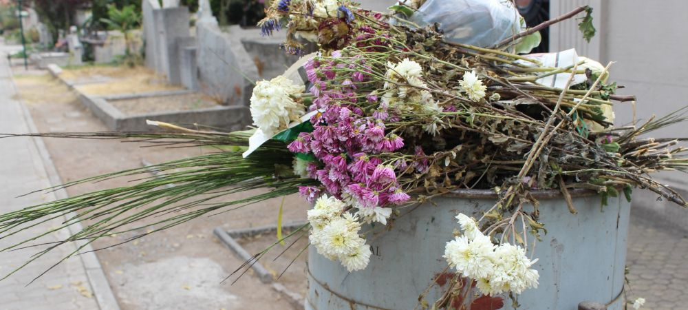 flowers in a cemetary
