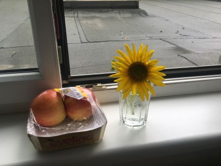 Sunflower and Apple