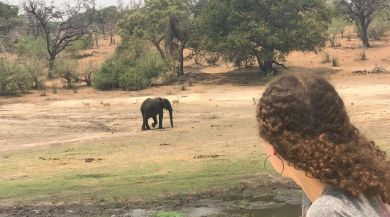 Me looking at an elephant