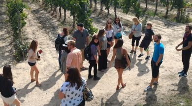 Siena study abroad students walk through vineyard
