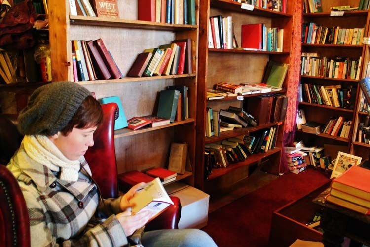 Dublin student reading in the library