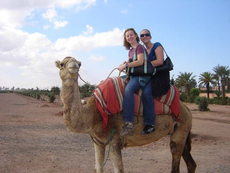 Rabat students on a camel