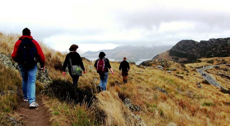Christchurch students hiking