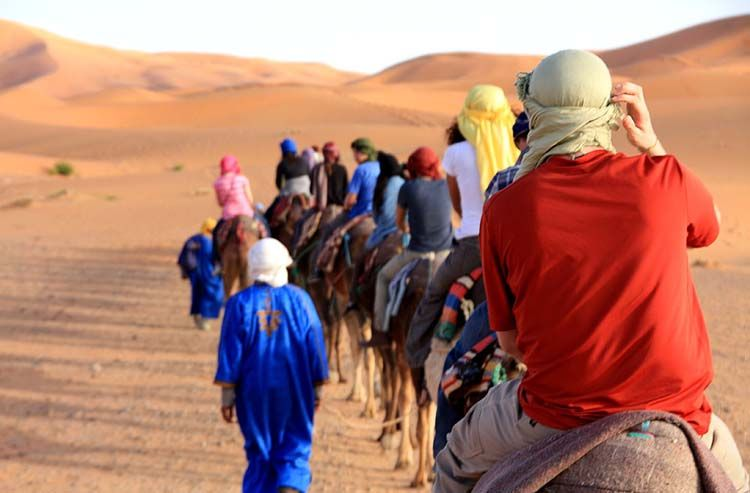 Riding camels in a line