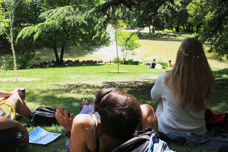 Students relaxing on the grass