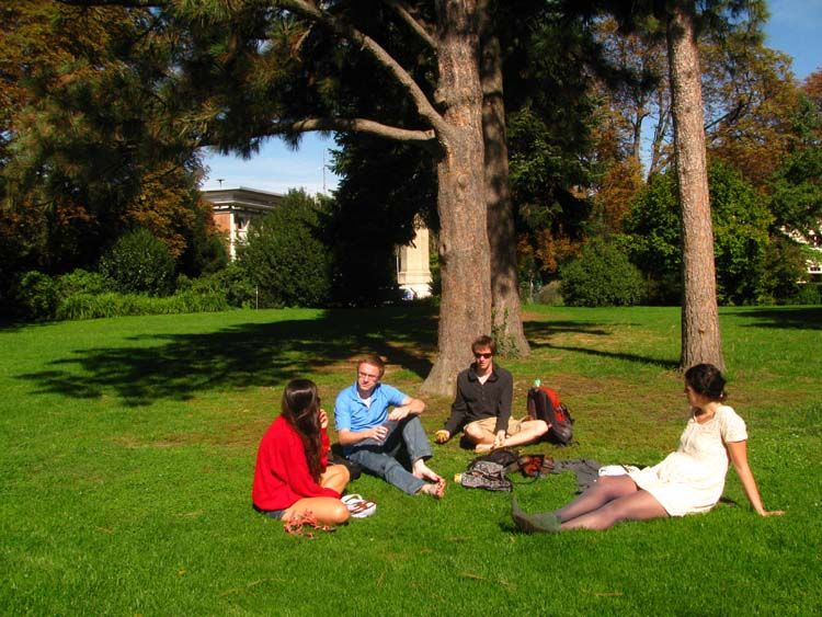 Freiburg students talking on the grass