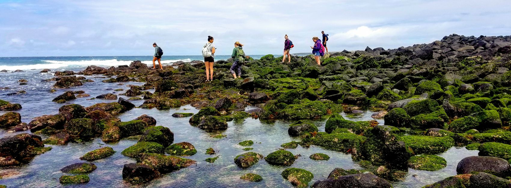 Students studying the water in the Galapagos Islands