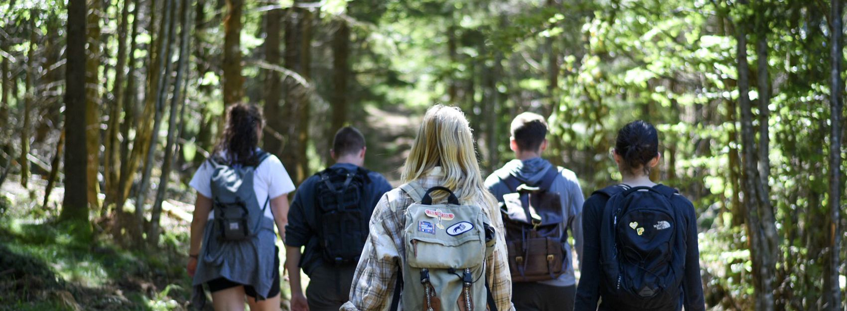Study Abroad in Germany Students Hiking in the Black Forest