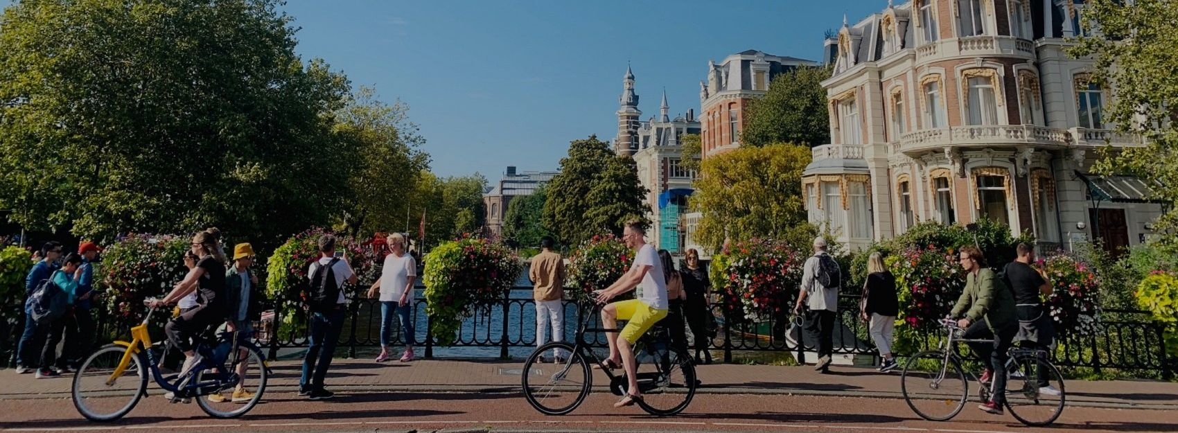 street level photo of people bicycling in amsterdam on a sunny day