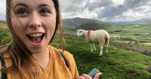 Checking out the sheep in Dingle
