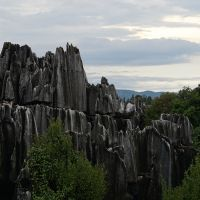 Stone Forest Kunming Scenic View
