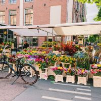 Bloemenmarkt (Flower Cart) at Albert Cuypmarkt