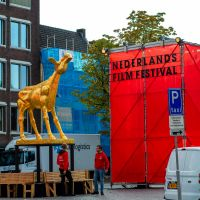 Set-Up for the Netherlands Film Festival