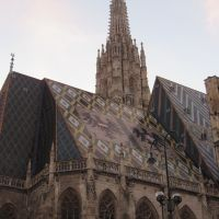 St. Stephan's Cathedral (one of the few sights that is within walking distance of IES abroad)