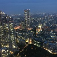 The view from the Tokyo Metropolitan Government Building