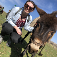 A person kneeling next to a donkey