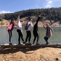 """five people """"falling"""" off a long next to a lake"""